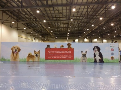 pet expo event backdrop